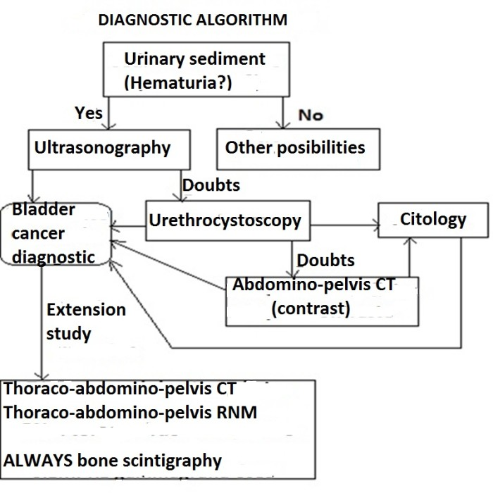 diagnostic algorithm